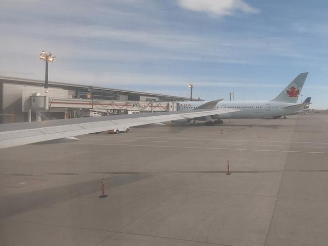 写真:エア・カナダの飛行機(カルガリー空港にて)