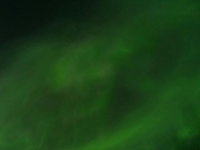 写真:真下から撮影した コロナ状オーロラ(イエローナイフのラッサム島から)