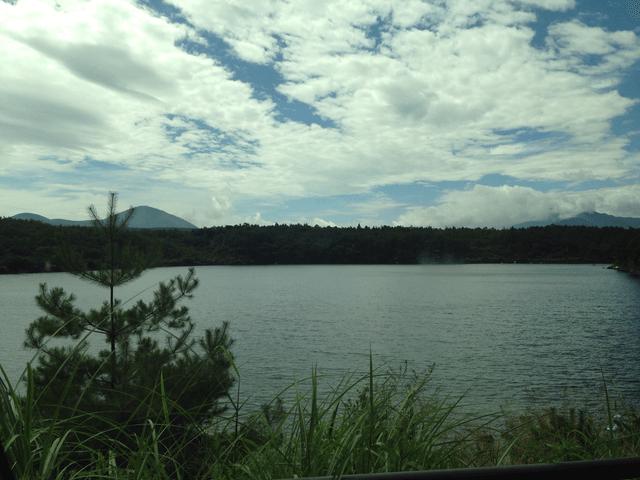 写真:夏の西湖(車窓からの眺め)