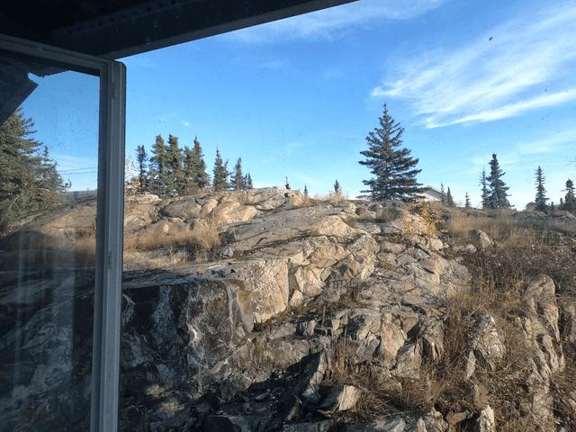 写真:イエローナイフの岩と林の風景