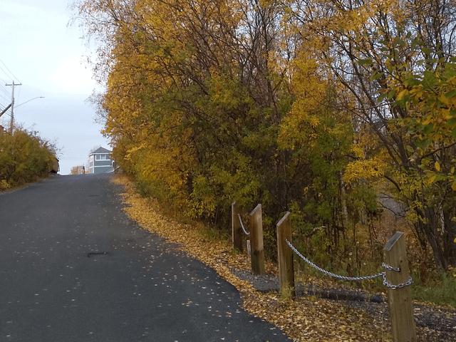 写真:ラキーン・パークに続く坂道