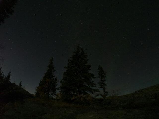 写真:イエローナイフ・ラッサム島の木々と星空